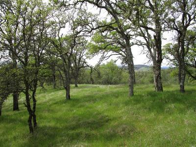 Clearlake Residential Lots & Land Contingent-Show: 2122 Ogulin Canyon Road