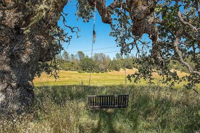 St. Helena Residential Lots & Land Contingent-Show: Pope Canyon Road