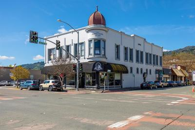 Sebastopol Commercial For Sale: 102 South State Street