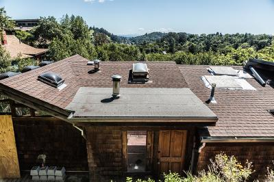 Marin County Single Family Home For Sale: 473 Scenic Avenue