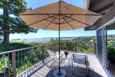 San Rafael Single Family Home For Sale: 28 Lochness Lane