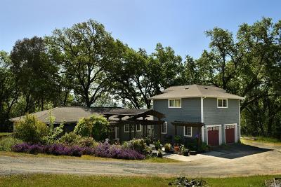 Ukiah Single Family Home For Sale: 2825 Oak Court Road