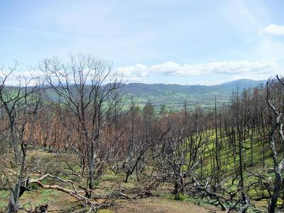 Redwood Valley CA Residential Lots & Land For Sale: $499,000