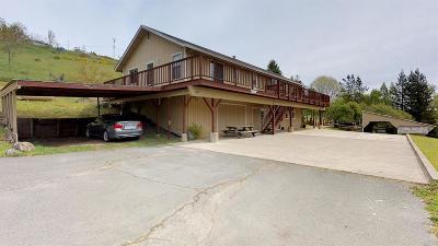 Sebastopol Single Family Home For Sale: 2650 Blucher Valley Road