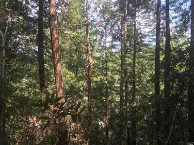Guerneville Residential Lots & Land For Sale: 19000 Upper Terrace