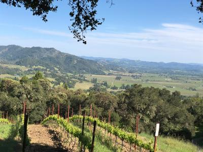 Sonoma County Residential Lots & Land For Sale: 551 Artisan Circle #Lot 7