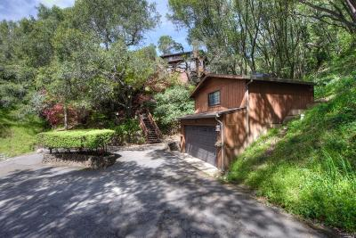 Mill Valley Single Family Home For Sale: 100 Marlin Avenue