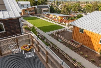 Petaluma Single Family Home For Sale: 720 Keller Court