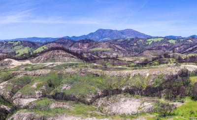 Calistoga Residential Lots & Land For Sale: 3975 Mountain Home Ranch Road