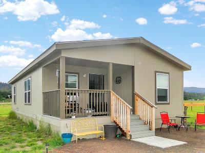 Lake County Single Family Home For Sale: 21121 Loconomi Road