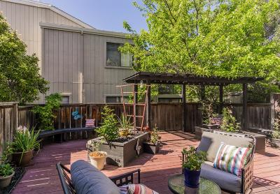 Napa County Condo/Townhouse For Sale: 490 Trout Court