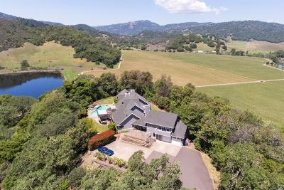 Hopland Single Family Home For Sale: 701 Macmillan Drive
