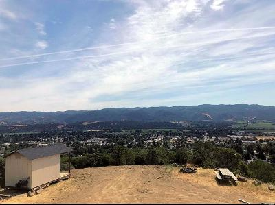 Ukiah CA Residential Lots & Land For Sale: $580,000