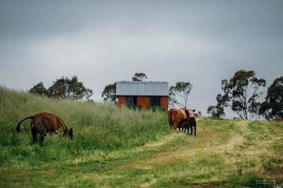 Petaluma Residential Lots & Land For Sale: 307 King Road