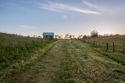 Petaluma Residential Lots & Land For Sale: 349 King Road