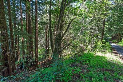 Guerneville Residential Lots & Land For Sale: 17535 Woods Avenue