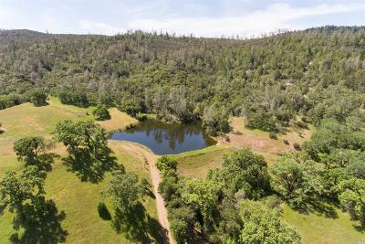 St. Helena Residential Lots & Land For Sale: Chiles Pope Valley Road