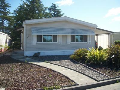Santa Rosa Single Family Home For Sale: 209 Regency Court