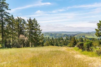 Residential Lots & Land For Sale: 16914 Burl Lane