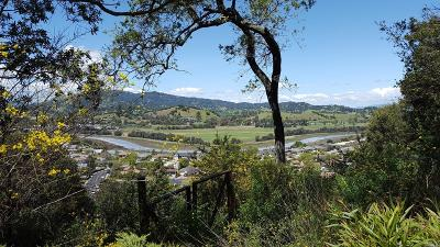 Marin County Residential Lots & Land For Sale: 110 Sunny Oaks Drive