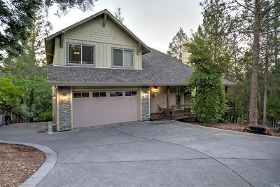 Calistoga Single Family Home For Sale: 315 High Street