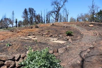 Santa Rosa Residential Lots & Land For Sale: 3568 Southridge Drive