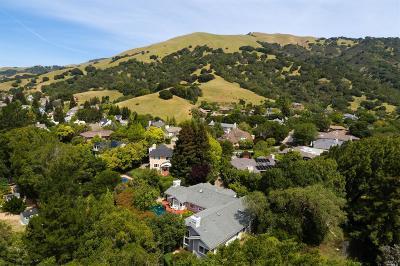 San Rafael Single Family Home For Sale: 32 Bridgegate Drive