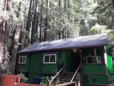Guerneville Single Family Home For Sale: 14686 Canyon 2 Road