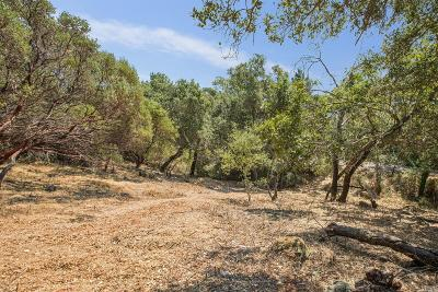Sonoma Residential Lots & Land For Sale: 303 Chestnut Avenue