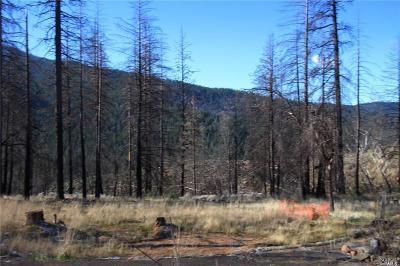 Lake County Residential Lots & Land For Sale: 15373 Shasta Road