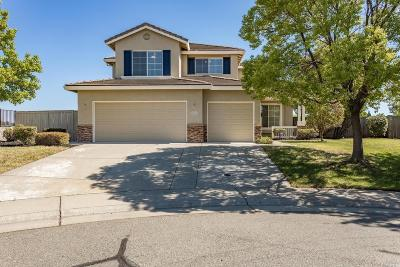 Rocklin Single Family Home For Sale: 5608 New Vista Court