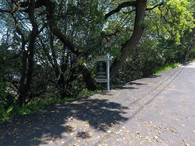Marin County Residential Lots & Land For Sale: 59 Bridge Road