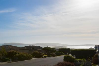 Bodega Bay Single Family Home For Sale: 21128 Hummingbird Court
