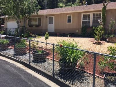 Napa Single Family Home For Sale: 119 Parkview Lane