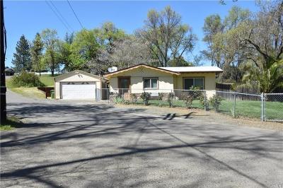Lakeport Single Family Home For Sale: 2504 Beach Lane