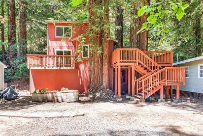 Guerneville Single Family Home For Sale: 14411 Camino Del Arroyo