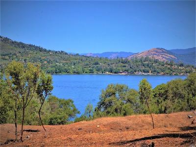 Kelseyville Residential Lots & Land For Sale: 9555 State Hwy 281