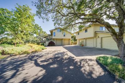 Napa Single Family Home For Sale: 10 Lupine Hill Road