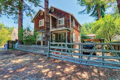 Guerneville Single Family Home For Sale: 17520 River Lane