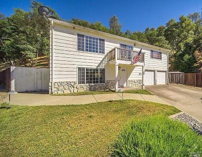 Napa County Single Family Home For Sale: 121 Parkview Lane