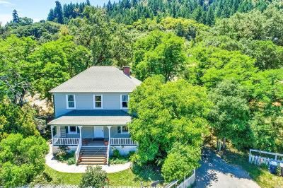Mendocino County Single Family Home For Sale: 33680 Hwy 128 Highway