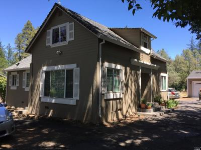 Napa County Single Family Home For Sale: 226 Mariposa Drive