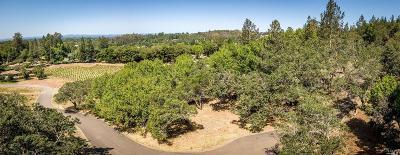 Residential Lots & Land For Sale: 3427 Old Zinfandel Lane