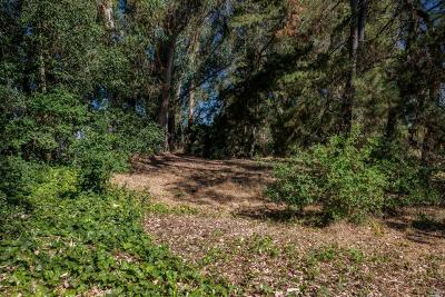 Residential Lots & Land For Sale: 8796 Lund Hill Lane