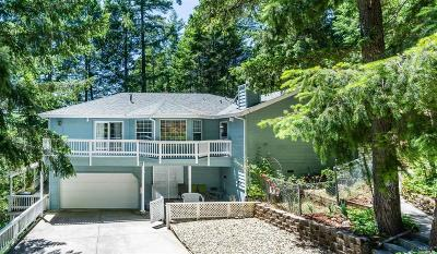Willits Single Family Home For Sale: 25696 Madrone Drive