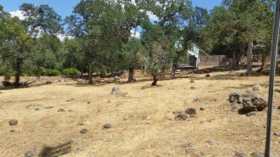 Napa County Residential Lots & Land For Sale: Lot 250 Harness Drive #Pope