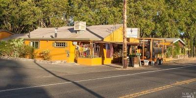 Sonoma CA Commercial For Sale: $1,350,000