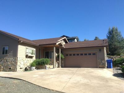 Kelseyville Single Family Home For Sale: 4814 Iroquois Trail