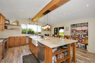 Rio Vista Single Family Home For Sale: 19250 Sherman Island East Levee Road