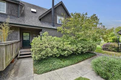 Mill Valley Condo/Townhouse Contingent-Show: 705 Miller Avenue